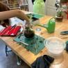 Atelier création Terrarium de plantes vertes