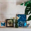 Atelier Tableau végétal Cyanotype