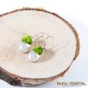 Atelier mini potager